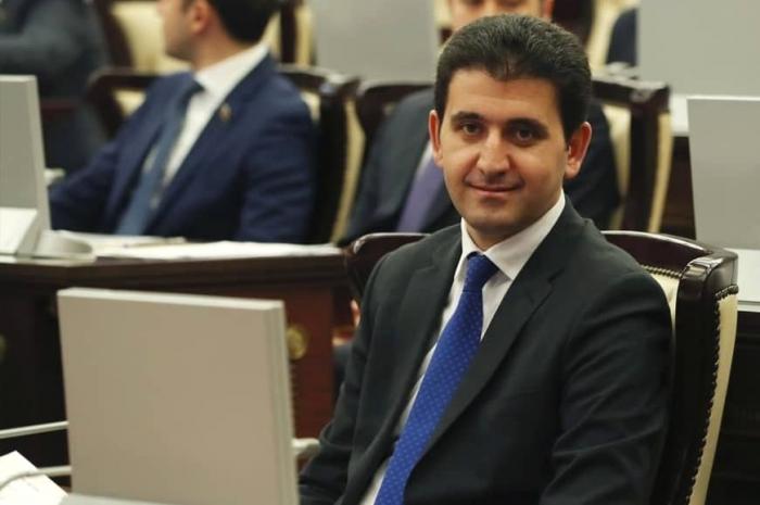 """Naqif Həmzəyev: """"Gəncə Hava Limanına Nizaminin adı verilsin"""""""